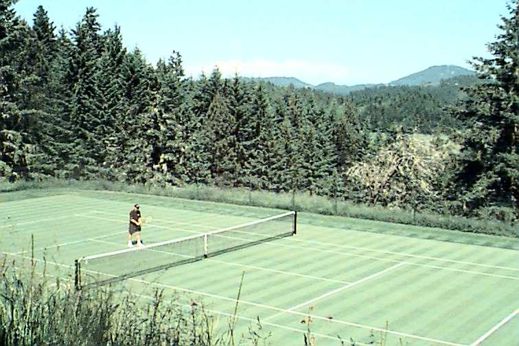 In A Picture Taken 1998 Steve Plays Tennis By Himself Did He Win